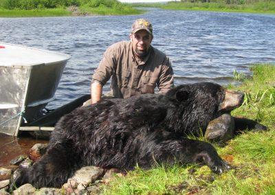 Bear 400lbs